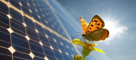 pjb_solar-photovoltaic-panels_feature17778