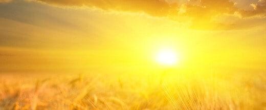 pjb_solar-photovoltaic-panels_feature42277
